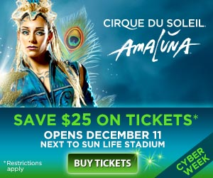 Instead of traditional circus acts, Cirque du Soleil focuses more on dance, theater and acrobatics. It began in with 75 employees and has expanded to 5, employees all over the world, including 1, performers. You can purchase tickets and watch .
