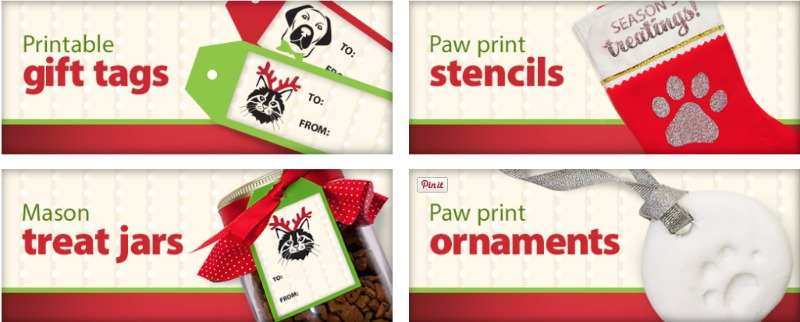 Easy DIY gifts for pets
