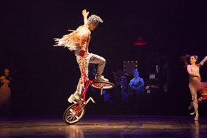 Cirque Du Soliel VOLTA Family 4 Pack Giveaway!